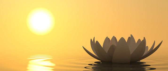meditation_3555_advice_32463